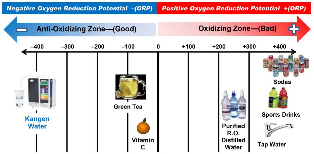 Kangen Water Oxidization Reduction Potential (ORP)